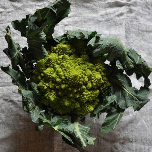 Romanesco 3 blog.jpg