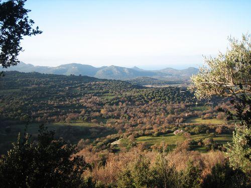 paysage avec San Bastianu blog.jpg