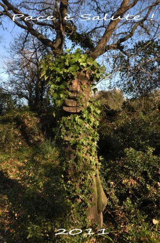 dieu du jardin 2 voeux blog.jpg