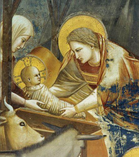 Giotto détail de la Nativité, Padoue.jpg