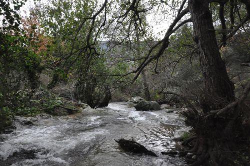 ruisseau crue copie.jpg
