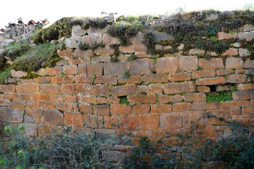 S Cervone mur sud.jpg