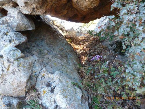le dolmen.jpg