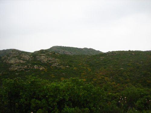 montagne du Revincu blog.jpg