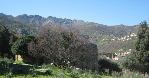 san Giovanni Battista piève de Toani.jpg