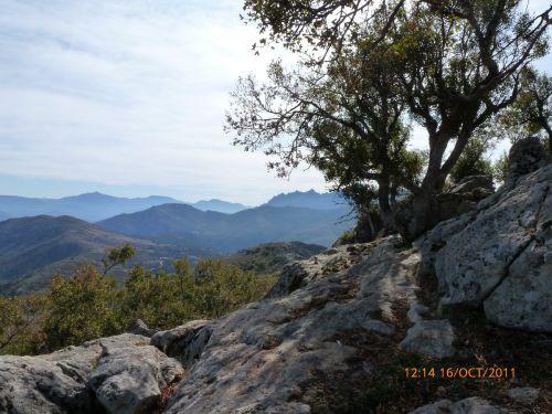 ghjunsani,dolmen de l'ascita