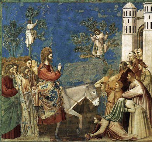 Giotto entrée à Jérusalem.jpg