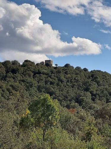 la tour de Monte Albano.jpg