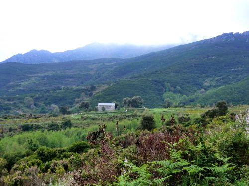 chapelle paysage.jpg