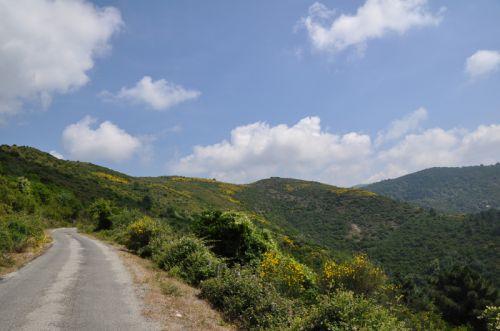 sur la route du Boziu.jpg