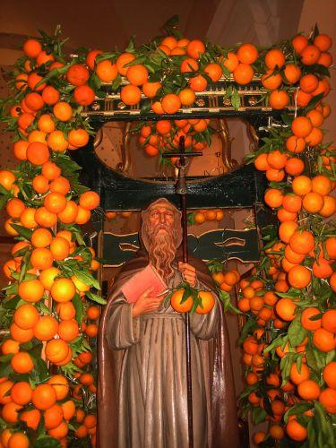 les oranges de st Antoine blog.jpg