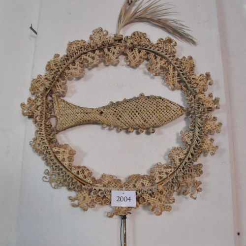 Erbalunga palme poisson.jpg