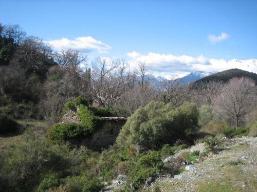 Altiani S michele paysage.jpg