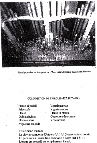 Rubellin 4.jpg