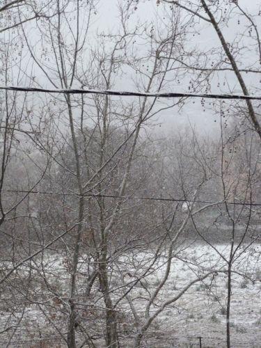 il neige.jpg