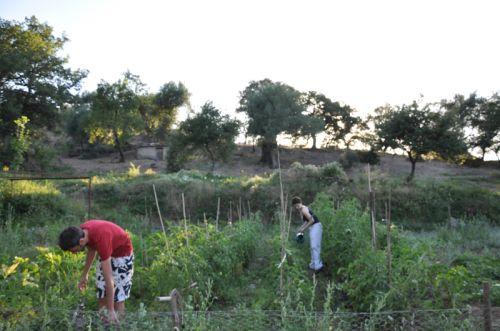 jardin Clement et Giusi.jpg