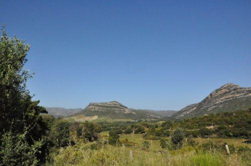 Nebbiu route san Quilicu.jpg