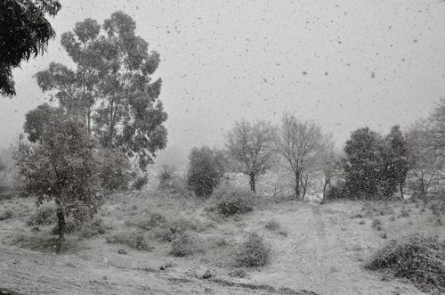 neige 2 blog.jpg